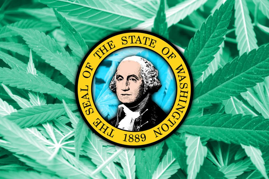 washington cannabis marijuana