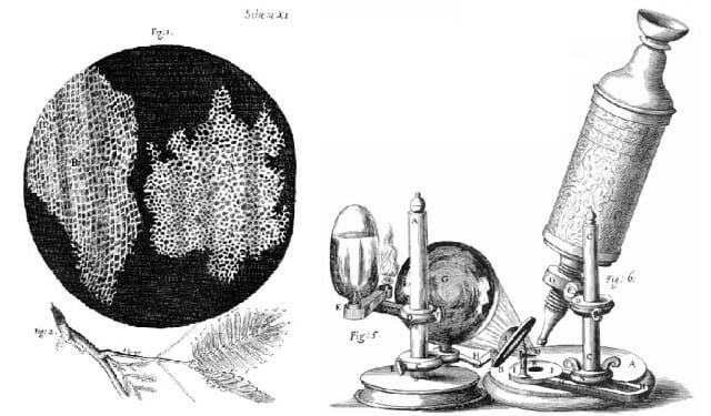 The Hooke microscope, which enabled him to see things clearly
