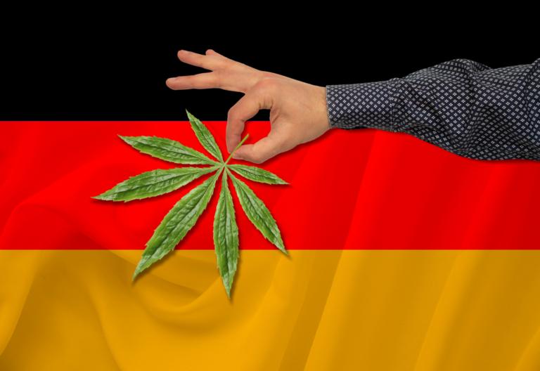germany cannabis marijuana green